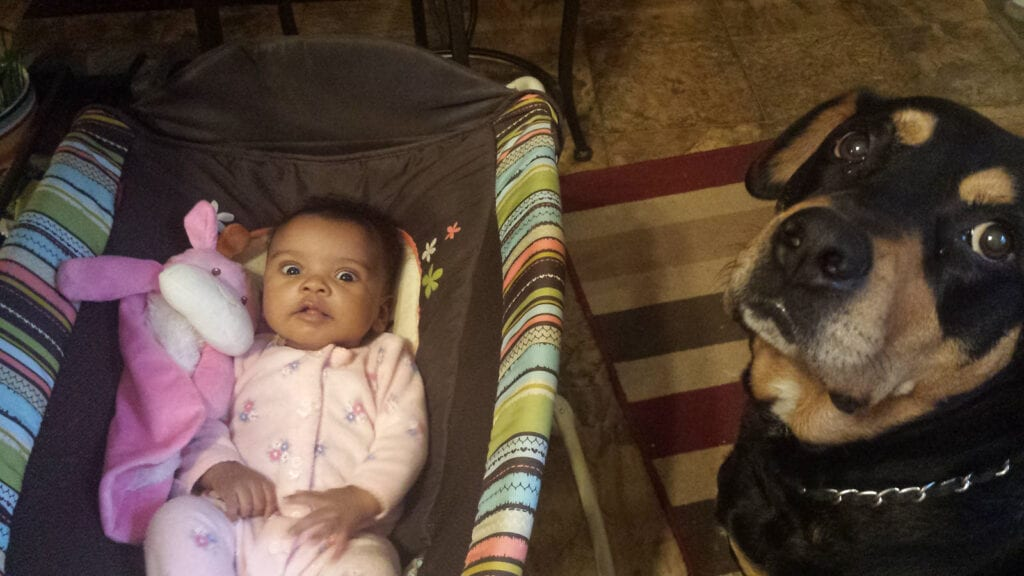 Cody and Sophia - Rottweiler and baby