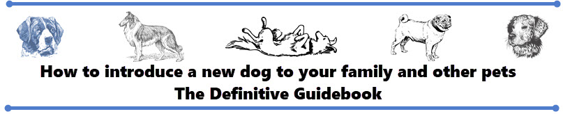 how to introduce a new dog into your home - the definitive guidebook