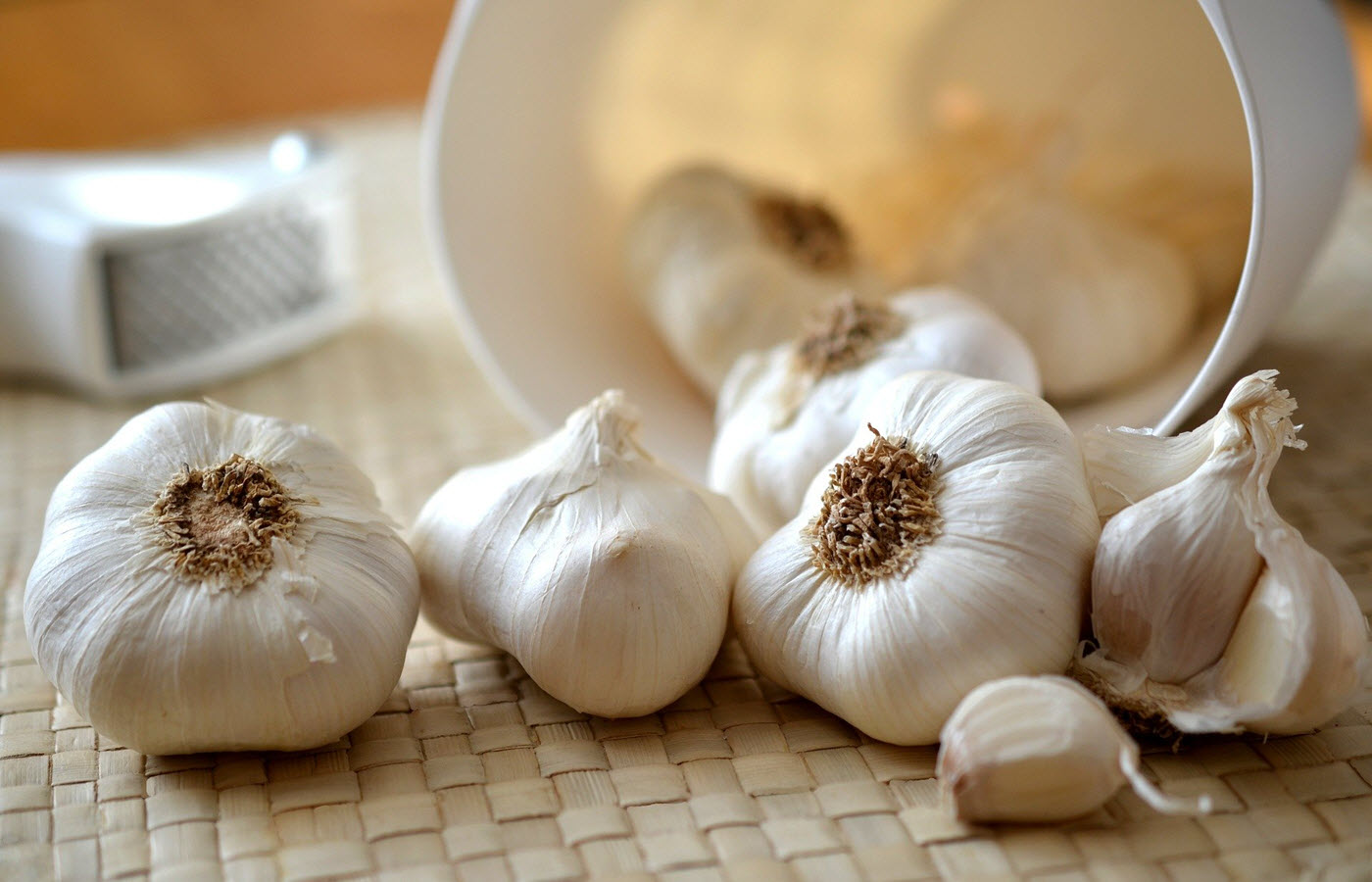 Can dogs eat garlic cloves