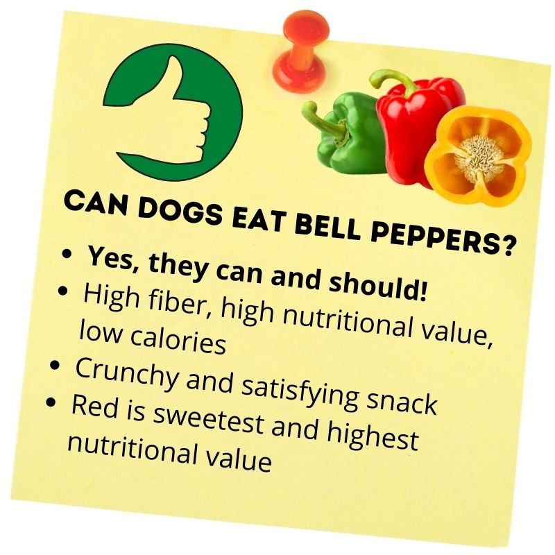 Can dogs eat bell peppers_